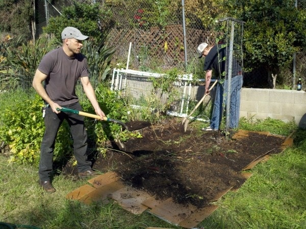 Lasagna garden with cardboard soil etc the greenman for Garden soil layers