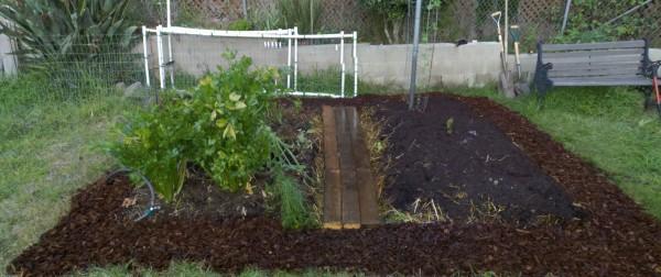 Finished lasagna garden renovation