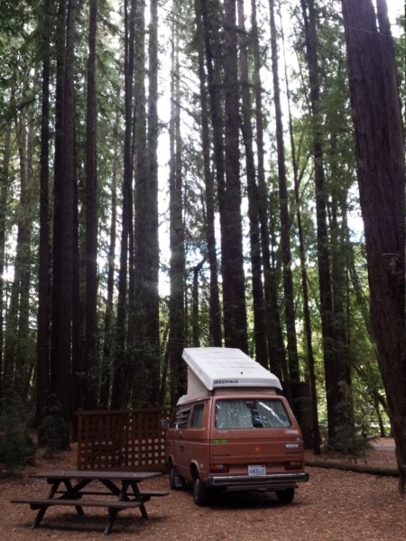 Westy roadtrip - The Greenman Project -7