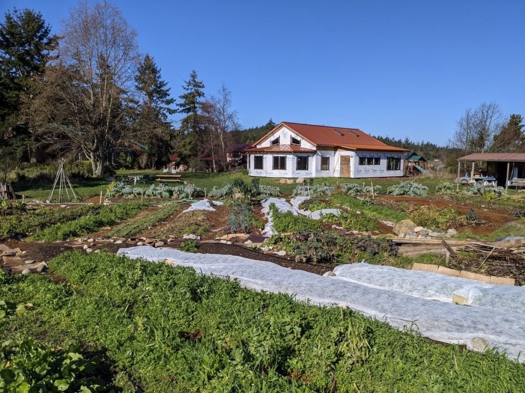 Vegetable garden in foreground with common house being constructed